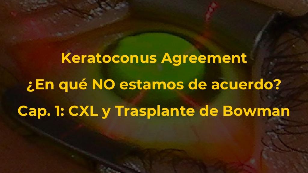 Keratoconus Agreement: En qué NO estamos de acuerdo Cap.1