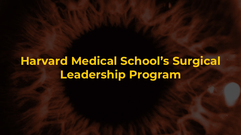 Harvard Medical School's Surgical Leadership Program